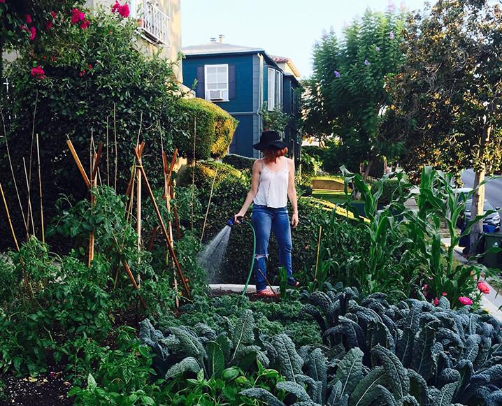 edible-garden-718x581c